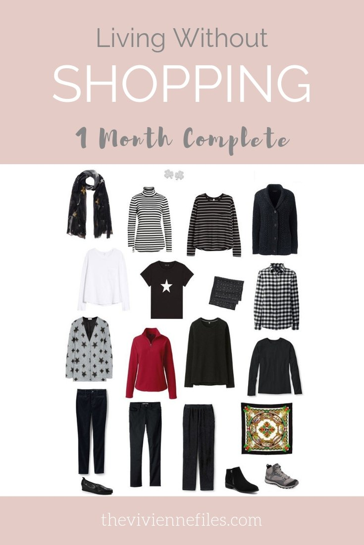 LIVING WITHOUT SHOPPING – 1 MONTH COMPLETED!